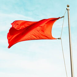 Red flag Photo by Carson Masterton Unsplash